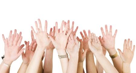 Humanos manos planteado aislados en fondo blanco Foto de archivo