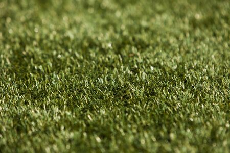 Close up of grass with short focal depth