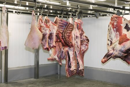 Animal bodys at the Slaughterhouse photo