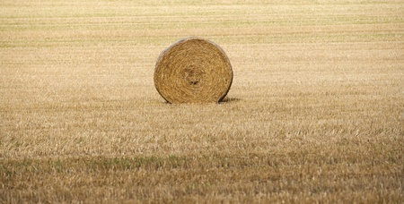 haystack: Hay stack on a filed Stock Photo