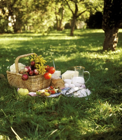 Pane, pesce e verdure in un cestino da picnic photo