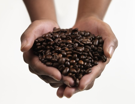 large bean: Hands holding Large group of Coffee beans Stock Photo