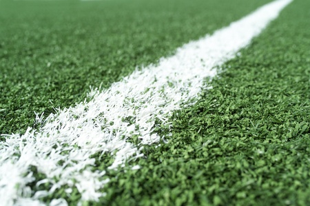 nature photography: Detail on a Soccer Field