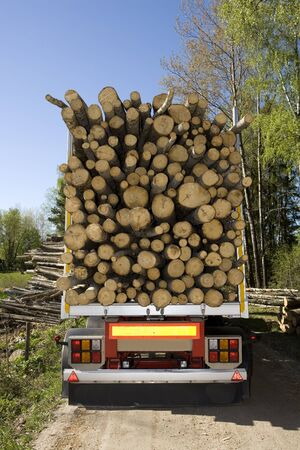 felling: Loaded Timber on a truck Stock Photo