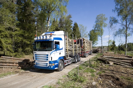 felling: Truck with timber in the forest Editorial