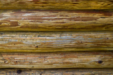 Log house structure wood photo