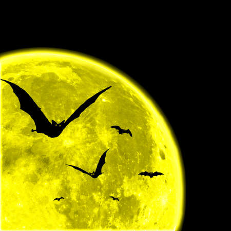 Bats against the moon