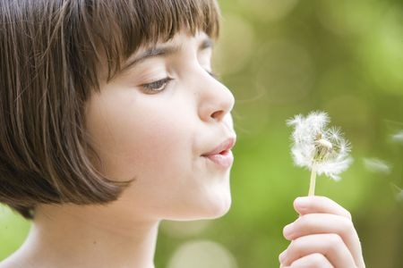 young girl blowing the seeds from a dandelion photo