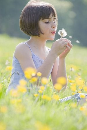 guessing: young female child sitting in field of buttercups blowing a dandelion  Stock Photo