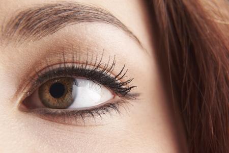 globo ocular: cerca de los ojos de color marr�n con ojos womans pesta�as postizas Foto de archivo