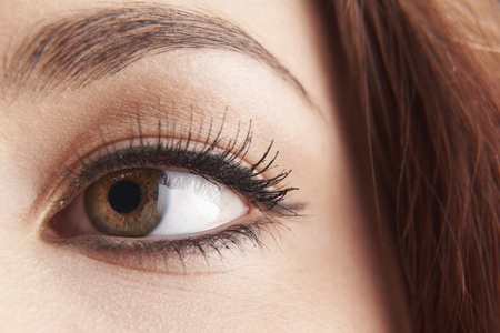close up of womans brown eye with false eye lashes