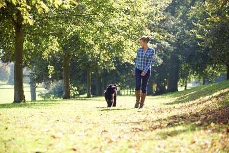 woman walking her black dog in the park on a sunny day Stock Photo