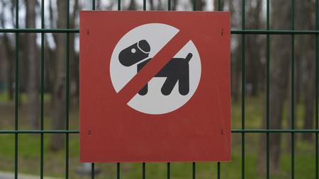 Signe d'interdiction de la marche des chiens, chiens autorisés Banque d'images - 78339402