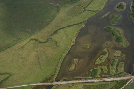 tributary: A tributary in Southern England leading into the sea