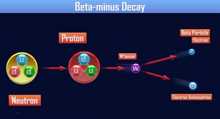 positron: Beta-minus Decay