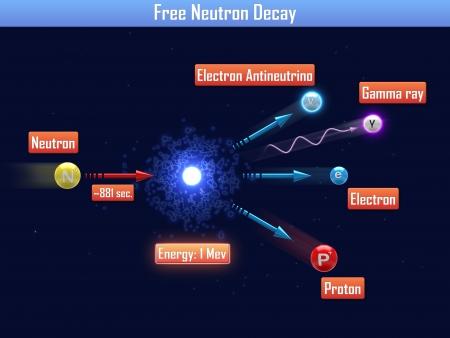 gamma radiation: Free Neutron Decay