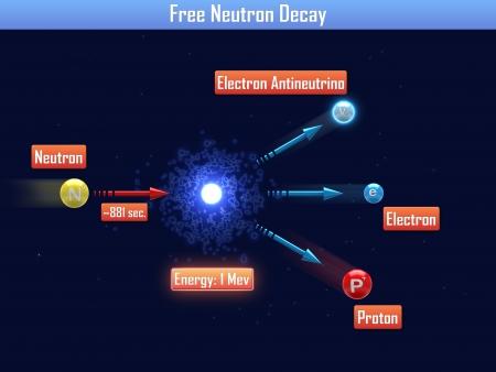 Free Neutron Decay Stock Photo - 24660604
