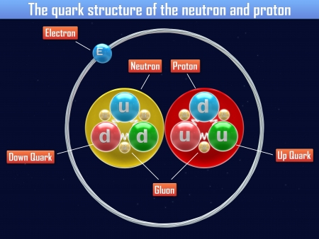 quark: The quark structure of the neutron and proton