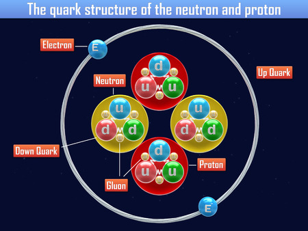 PROTON: The quark structure of the neutron and proton