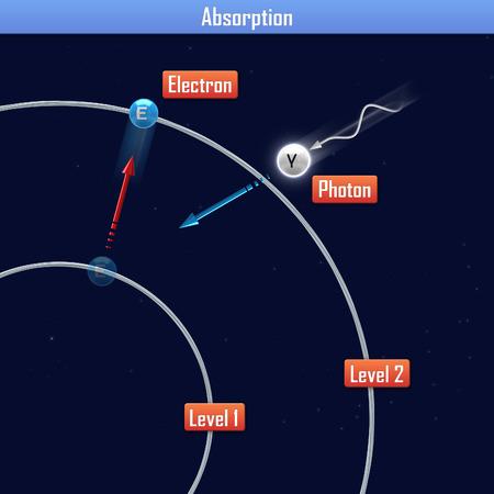 absorption: Absorption
