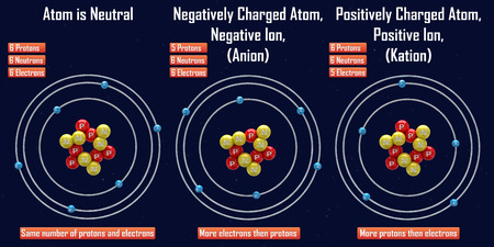 spin: Negative and Positive Ion (Anion and Kation)