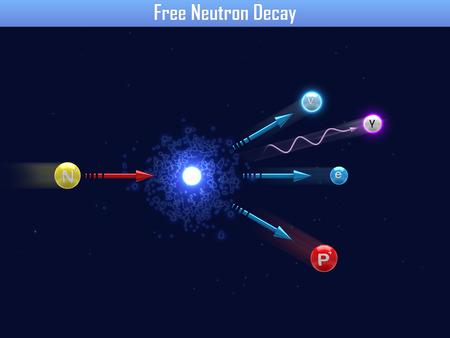 decay: Free Neutron Decay