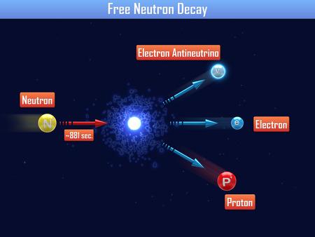 neutron: Free Neutron Decay