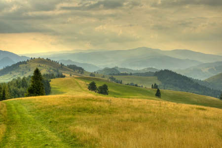 sunny meadow in polish mountains; panorama view of high mountains photo
