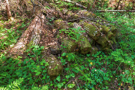 A very old pile of logs. The wonderful island Valaam is located on Lake Lodozhskoye, Karelia. Balaam - a step to heaven