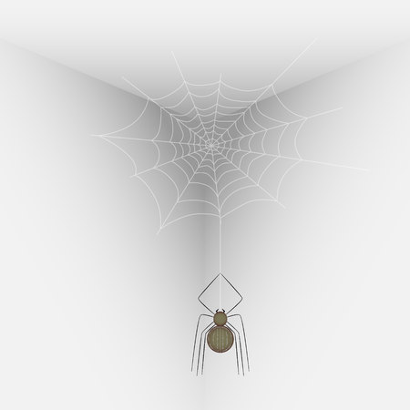 sullen: Vector illustration of a spider on a web in the corner of the room