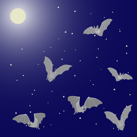 flying bats: Vector illustration of flying bats in the night sky with the moon and stars Illustration