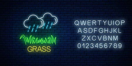 Neon sign of raining clouds and plot of grass on dark brick wall background with alphabet. Lawn irrigation concept in neon style. Vector illustration.