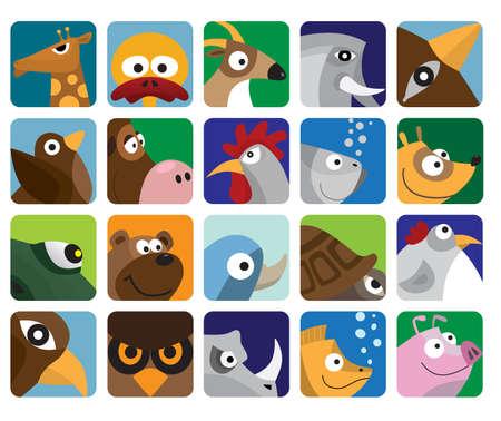 cock duck: Animals set icon Illustration