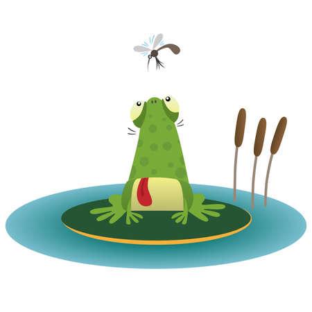 moscerino: Rana e la zanzara Vettoriali