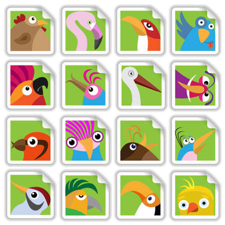 pets: Funny birds set (Illustration for web design)