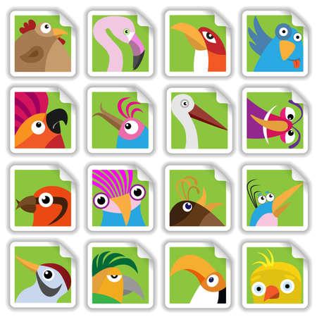 parrot tail: Funny birds set (Illustration for web design)