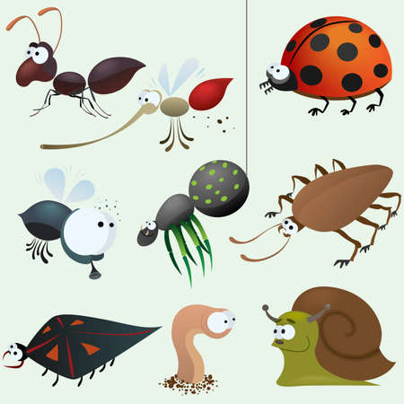 insect flies: Funny insect set Illustration