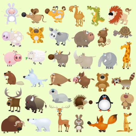 pinguino caricatura: Conjunto de animales de caricatura vector grande