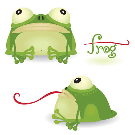 amphibians: Cartoon frog isolated on white background (front and sideview)