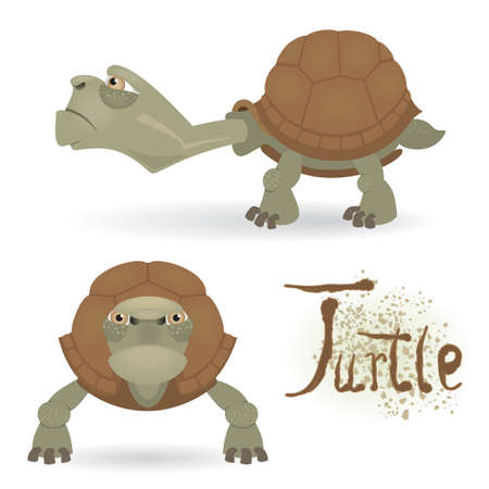 sideview: Angry cartoon turtle isolated on white background (front and sideview) Illustration