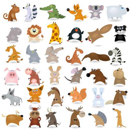 cerdo caricatura: Dibujos animados grandes conjunto de animales Vectores