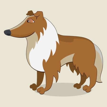 legged: Cartoon illustration of collie dog