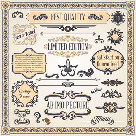 Vintage ornaments and frame, calligraphic design elements and page decoration Illustration