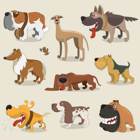 greyhound: Cartoon dogs collection Illustration