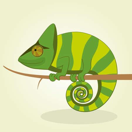 chameleon lizard: Vector Illustration of Cartoon Chameleon Illustration