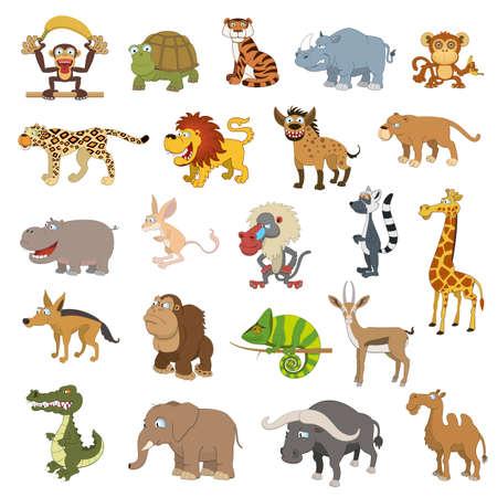 tigre caricatura: Animales africanos conjunto aislado sobre fondo blanco Vectores