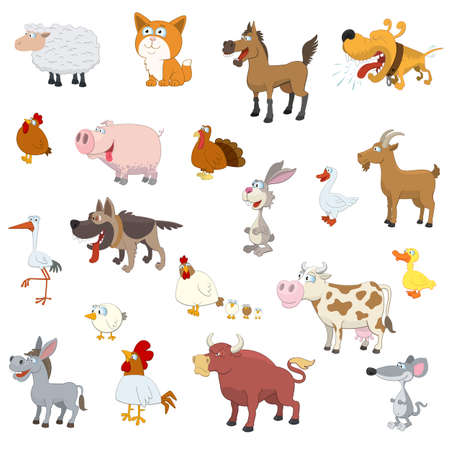 Farm animals set on white background