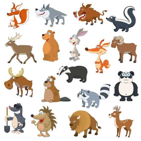 castor: Los animales del bosque establecen en el fondo blanco Vectores
