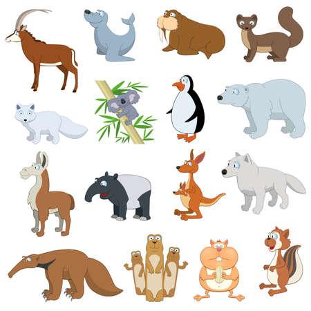 sable: Various Wildlife Animals set on white background