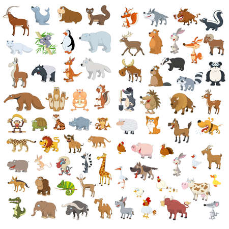 Extra big vector animals and birds set Illustration